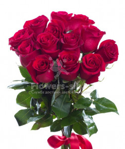 BOUQUET OF 15 ROSES